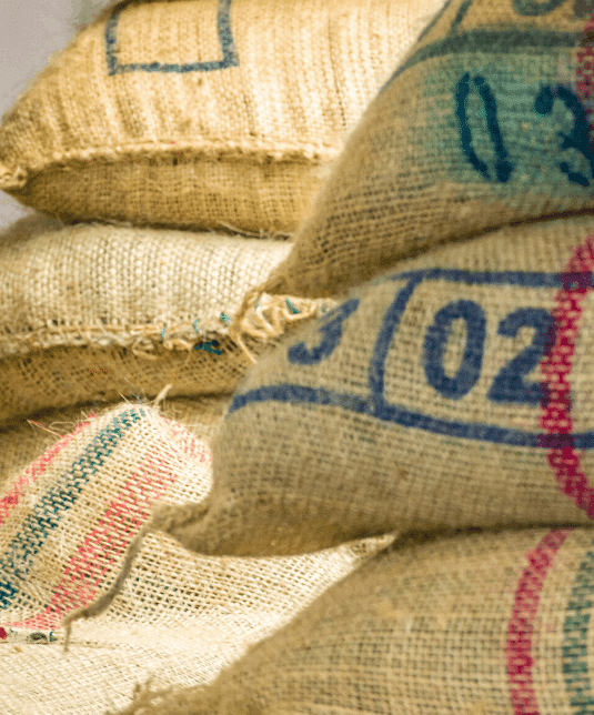 exporting of the green coffee