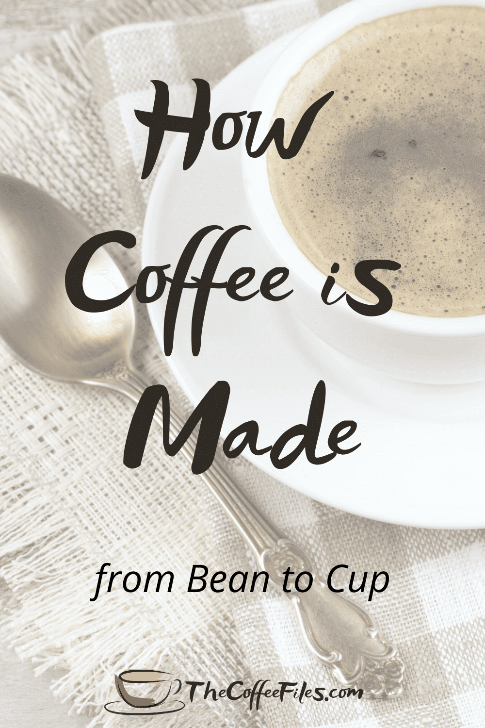 how coffee is made from bean to cup